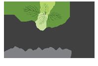 Minty Webs Limited Logo