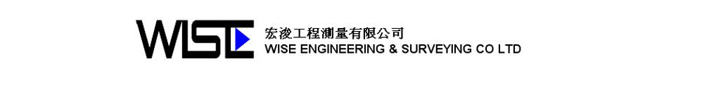 wise engineering & surveying co. ltd. Logo